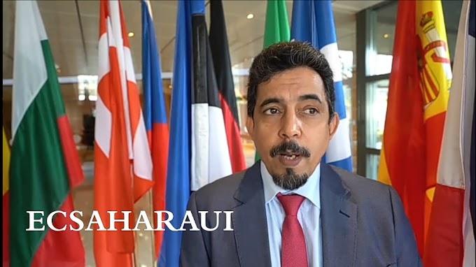 Oubbi: ''La violación por parte de la UE de la decisión del TJUE contribuyó a socavar el proceso de arreglo en el Sáhara Occidental.''
