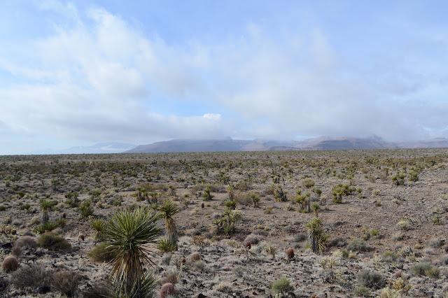Wildhorse Mesa partly visible