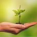 Curso Saúde e Meio Ambiente