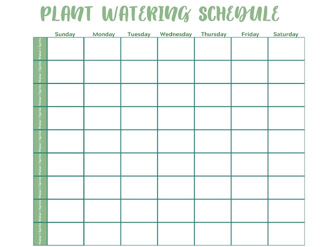 Blank Plant Watering Schedule