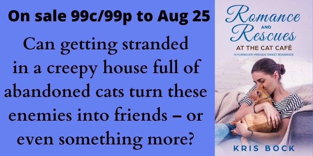 Can a creepy house full of cats turn these enemies into lovers? #bookbuzz #SweetRomance #ContemporaryRomance  #KindleSale #Romance