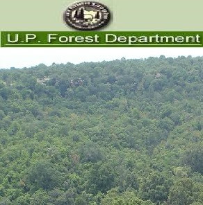 UP Forest Department Recruitment 2017 Notification & Apply Online