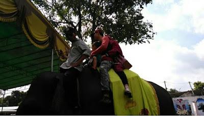 Naik Gajah Di TNWK Lampung