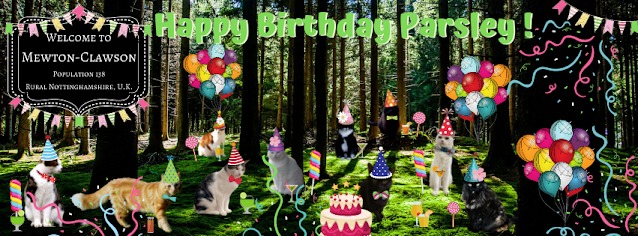 cat birthday party in a forest,  cats, cats in party hats, birthday party for cats,