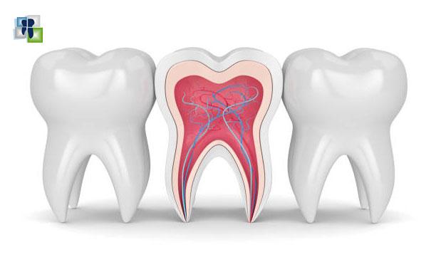 تصنيف أمراض لب الأسنان