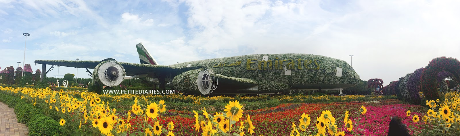 dubai miracle flower garden beautiful
