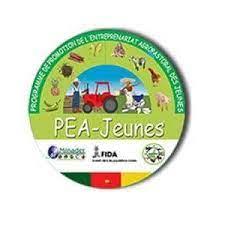 Recrutement des personnels du secrétariat permanent du REP-Jeunes