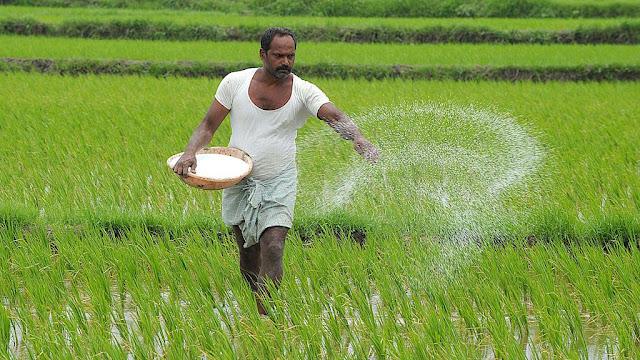 3 करोड़ किसानों को 30 हजार करोड़ रुपये मुहैया कराएगी मोदी सरकार, सस्ते दर में मिलेगा Loan