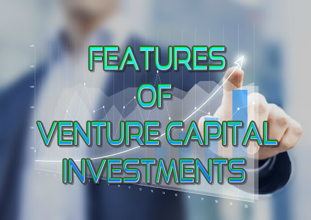 Features of Venture Capital investments