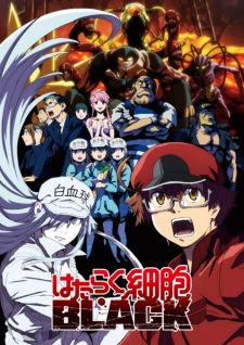 الحلقة  10  من انمي Hataraku Saibou Black (TV) مترجم