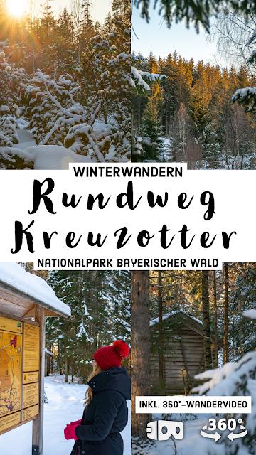 Rundweg Kreuzotter  Hochmoor Filzwald  Kloster Filz  Nationalpark Bayerischer Wald 31