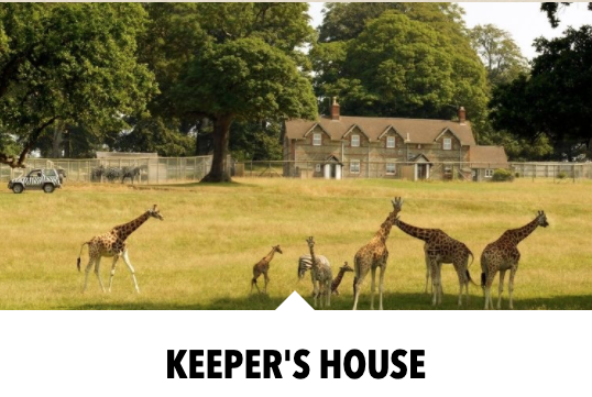 10 UK Zoos Where You Can Stay Overnight  - Longleat Cottages