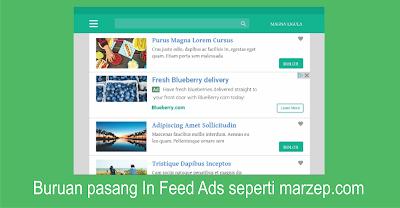 Cara Membuat Dan Memasang Iklan In-Feed Adsense di Blog