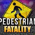 Florida man killed after being struck by semi on I-40