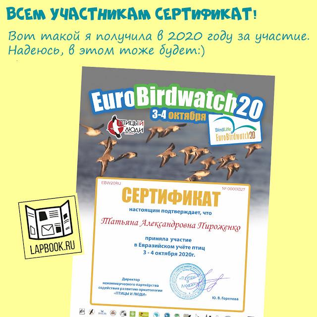 Сертификаты за учет птиц Евробердвотч