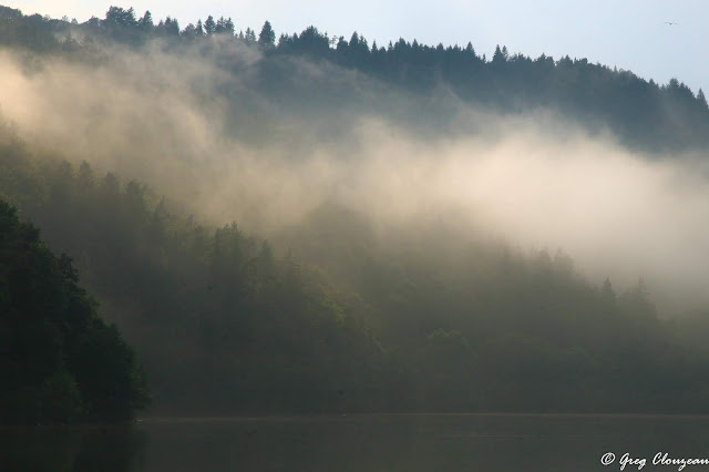 Brume estivale sur le  Lac Chambon, Auvergne, France