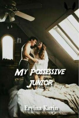 My Possessive Junior by Ervina Karin Pdf