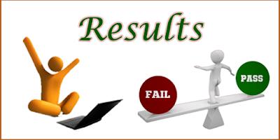 Rajasthan PTET Result 2019 Declared ptet2019.org