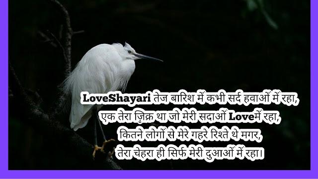 Love Shayari image hindi,love shayari-photo hd,Love-couple-Shayari-with-image,Beautiful-Love-Shayari-image,my-Love-Shayari-image,Love-Shayari-image