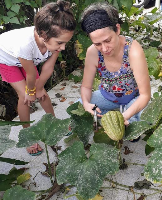 Vanessa Várguez Gamboa, de Mérida, obtuvo el primer lugar en la categoría de cinco a 10 años