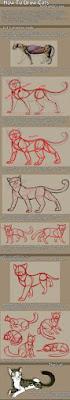 كيفية رسم الحيوانات بقلم رصاص
