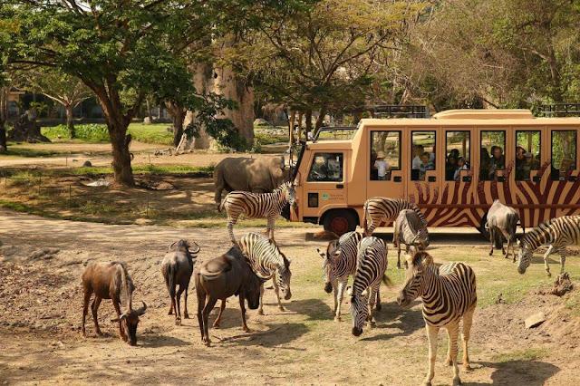 9. Taman Safari