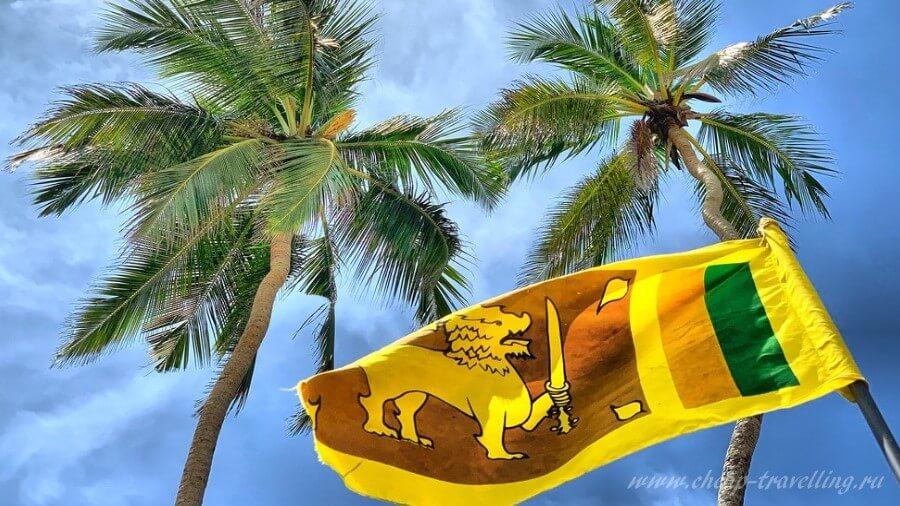 Пальмы и флаг Шшри-Ланки фото