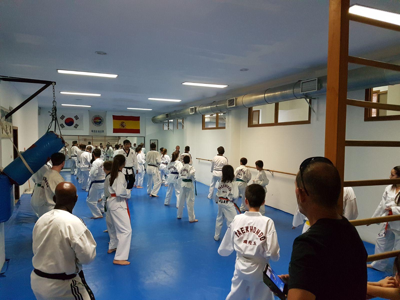 Taekwondo chong do lee valencia entrenamiento conjunto for Gimnasio lee
