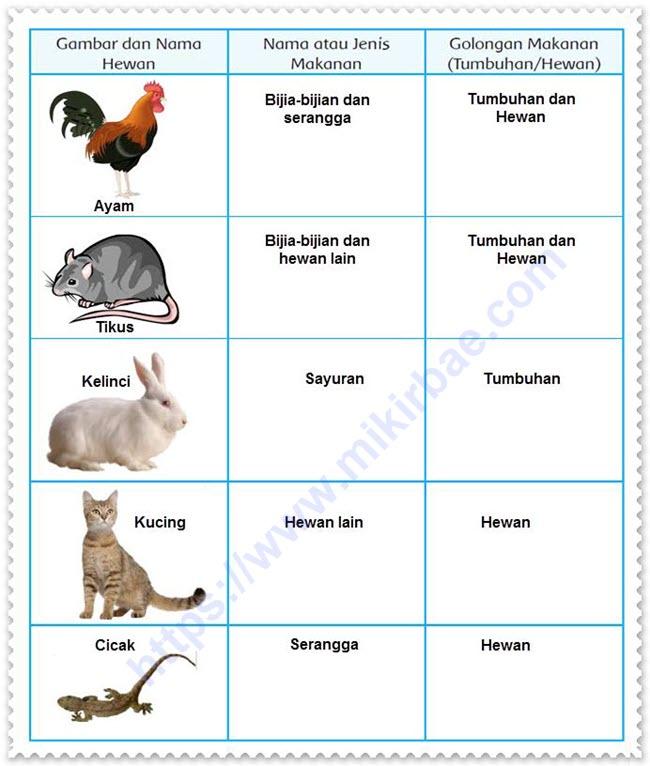 Hewan dan Makanannya