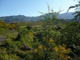 Valle del arroyo de la Varga