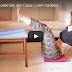 Atleta Olena Starodubets ensina treino completo de abdômen para fazer em casa