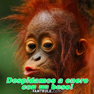 Imágenes Adios Enero Frases despedida con un beso mono