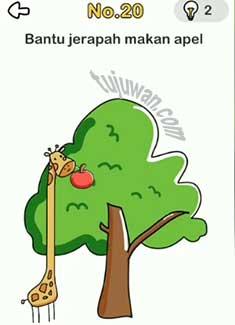 Bantu jerapah brain out makan apel