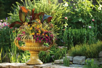 Willow Bee Inspired Garden Design No 2 Container