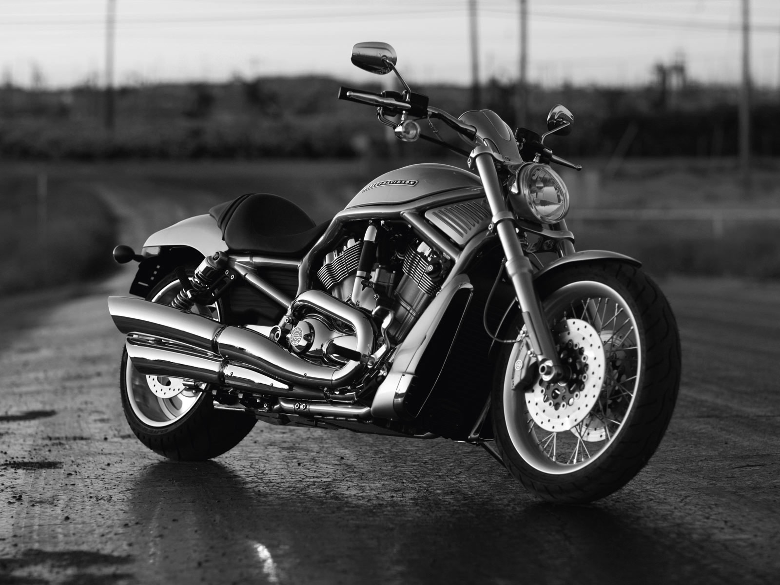 Hd Fiers Bikes Hd Wallpapers: 2010 Harley-Davidson VRSCAW V-Rod Pictures. Accident