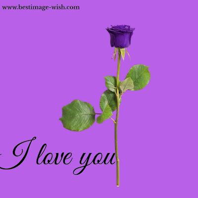 best romantic love quotes bengali