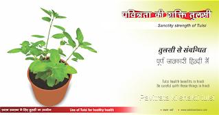 तुलसी के पत्तों से प्रतिरोधक क्षमता बढ़ती है in hindi, Basil leaves increase immunity in hindi, शालिग्राम का महत्व in hindi, Importance of Shaligram in hindi, तुलसी के पौधे का धार्मिक महत्व   in hindi, Religious importance of Tulsi plant in hindi, पवित्रता की शक्ति तुलसी in hindi, Pavitrata ki shakti tulsi in hindi, सावर्णि मुनि की पुत्री बहुत सुन्दर थी, उनकी इच्छा थी कि उनका विवाह भगवान विष्णु के साथ हो in hindi नारायण पर्वत में स्थित बदरीवन में घोर तपस्या की in hindi, तुलसी ने परमपिता ब्रहमा जी से कहा in hindi,  आप तो सब जानते है फिर भी मैं अपनी इच्छा बताती हूं in hindi,  मुझे भगवान श्री विष्णु की पति के रूप में प्राप्ति हो in hindi, ब्रहमा जी ने कहा तुम्हारी इच्छा अवश्य पूरी होगी in hindi, तुम पत्थर बन जाओगे in hindi, माता लक्ष्मी रोने हुए वृंदा से प्रार्थना करने लगी in hindi, राख से एक पौध निकला in hindi, भगवान विष्णु बोले आज से इस एक पौधे नाम तुलसी है in hindi, जिसे शालिग्राम नाम से जाना जाएगा in hindi, मेरी पूजा अर्चना फल-फूल से न होकर तुलसी दल से होगी in hindi, Sanctity strength of Tulsi in hindi, स्वस्थ स्वास्थ्य के लिए तुलसी का उपयोग  in hindi,  Swasth swasthya ke liey tulsi ka upayog in hindi, तुरन्त असरदार सर्दी जुकाम के लिए in hindi, Turant asaradar sardi jukam ke liey in hindi, सर्दी जुकाम में अगर तुलसी के पत्तों के साथ काली मिर्च, मिश्री को उबालकर काढ़ा  in hindi, बनाकर पीने से शीघ्र आराम मिलता है in hindi, कटे-घाव से शीघ्र आराम मिलता है in hindi, Kate-ghav se sheeghr aaram milta hai in hindi, तुलसी के पत्तों के साथ फिटकरी का मिश्रण बनाकर लगाने से घाव शीघ्र ठीक हो जाता है in hindi, श्वास पीड़ितों के लिए अति लाभदायक in hindi, Swas peediton ke liey ati labhdayak in hindi, तुलसी के पत्तों और काले नमक का मिश्रण करके सेवन करने से श्वास पीड़ितों को आराम मिलता है in hindi, मानसिक तनाव दूर होता है in hindi, Manasik tanav door hota hai in hindi, तुलसी के पत्तों को चाय में मिलाकर पीनेे से थकान व तनाव से आराम मिलता है in hindi, पथरी पीड़ितों के लिए in hindi, Pathree peediton ke liey in hindi, तुलसी के पत्तों को दूध में मिलाकर पीनेे से पथरी रोग शीघ्र ठीक हो जाता ह