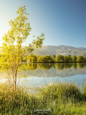 New Zealand, NZ, Twizel, Lake Ruataniwha, Wairepo Arm