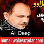 https://www.humaliwalayazadar.com/2012/11/blog-post_9265.html