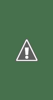 Fotografía de como se ve la interfaz del Comunicador Personal Adaptable (iPhone)