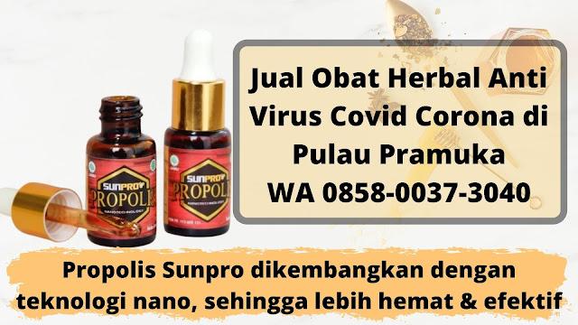 Jual Obat Herbal Anti Virus Covid Corona di Pulau Pramuka WA 0858-0037-3040