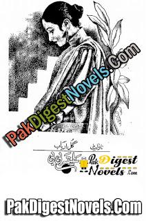 Saleeqa BiBi (Novelette) By Gull Arbab