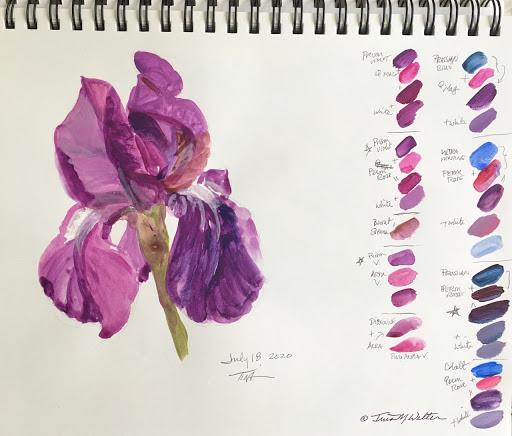 Dark Iris Sketch ll ©2020 TinaM.Welter