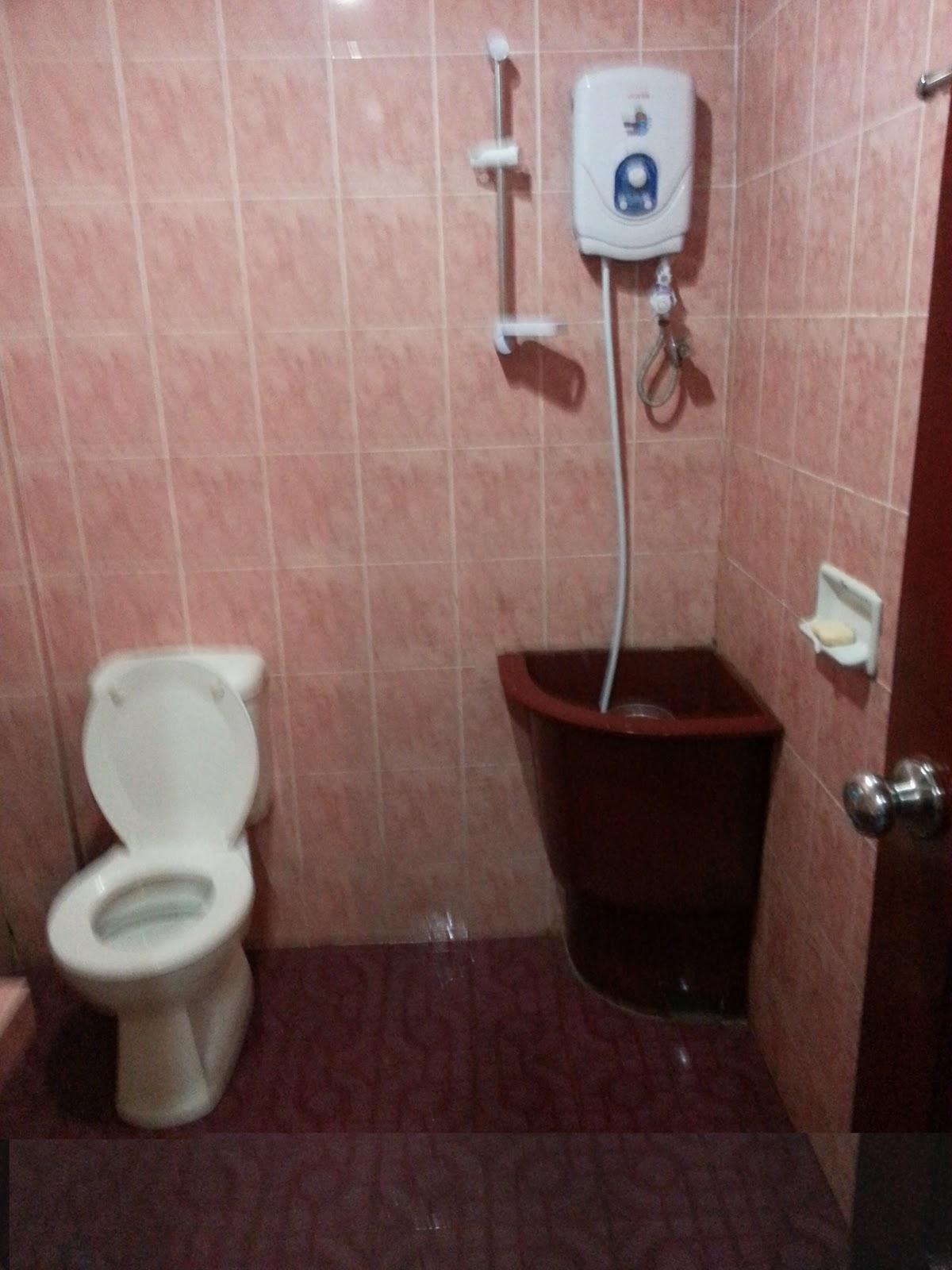 Renovating Bathroom Toilet