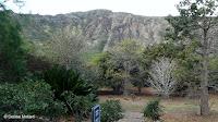 Garden overview - Koko Crater Botanical Garden, Oahu, HI
