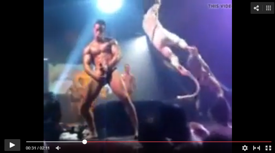 vergas de strippers