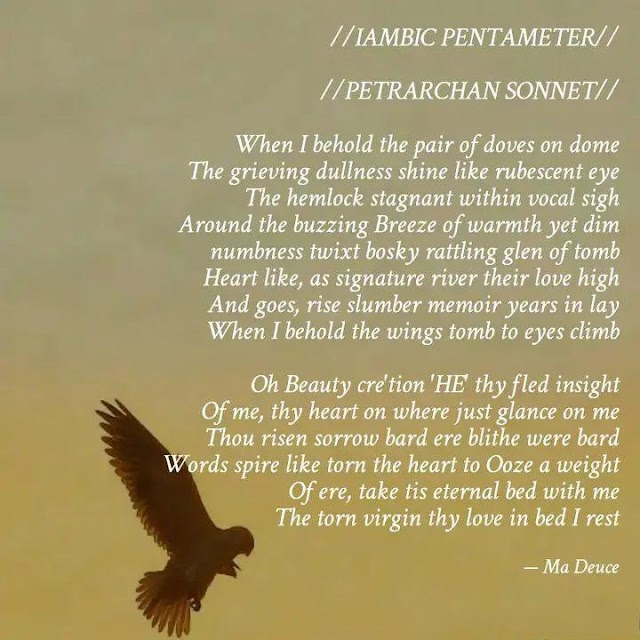 IAMBIC PENTAMETER POETRY