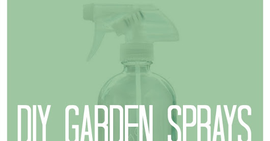 10 DIY Garden Spray Recipes