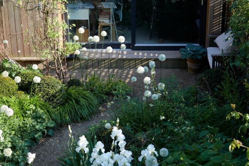 Un pequeño patio convertido en jardín blanco - Guia de jardin