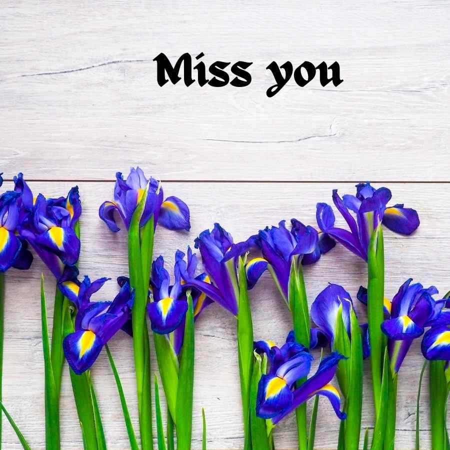 i miss you cute baby images